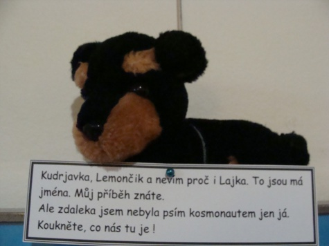 Lajka a zvířecí kosmonauti - muzeum Jílové u Prahy