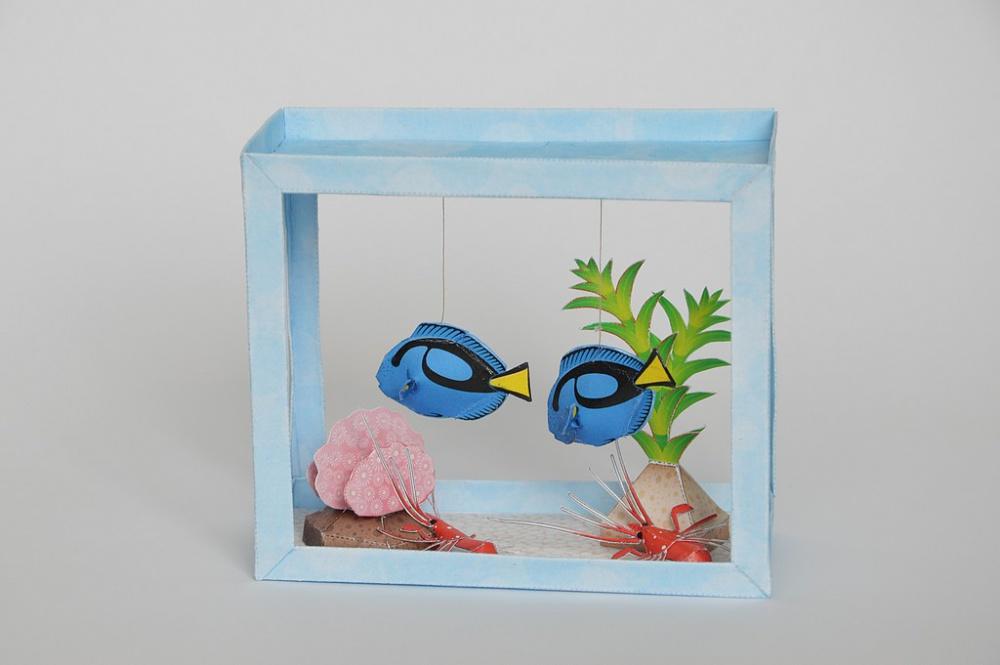Akváriá,delfín a klietka
