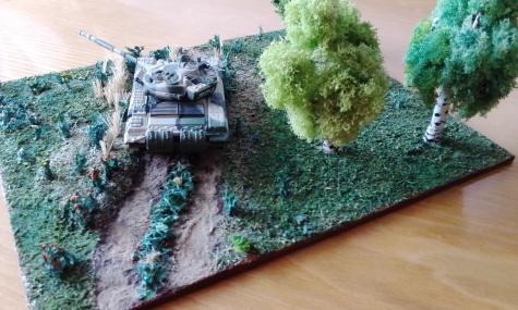 T 72 v akcii