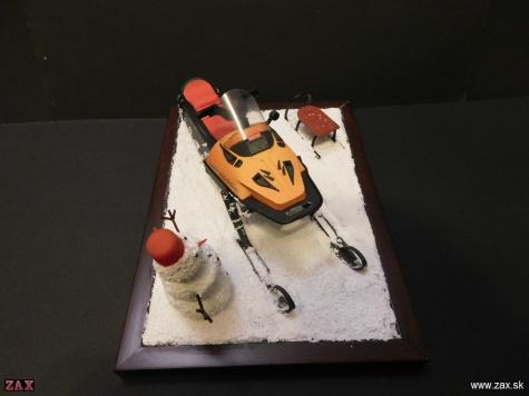 Ski-doo Alpine III