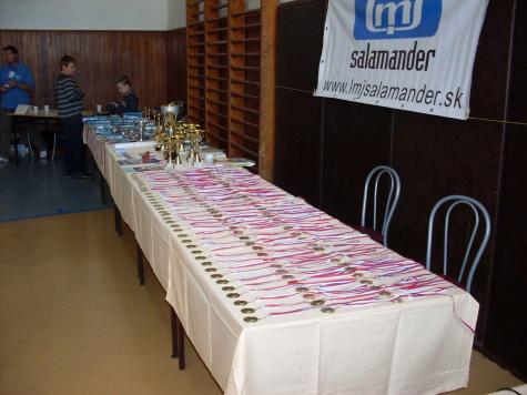 Cena primatora mesta Nitra 2011