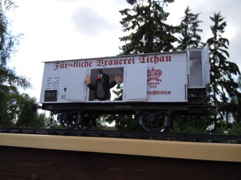 Fakultativwagen