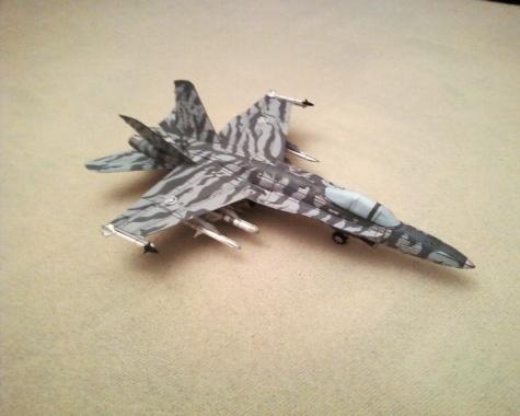 Hornet CF-18 Tiger Meet 1991