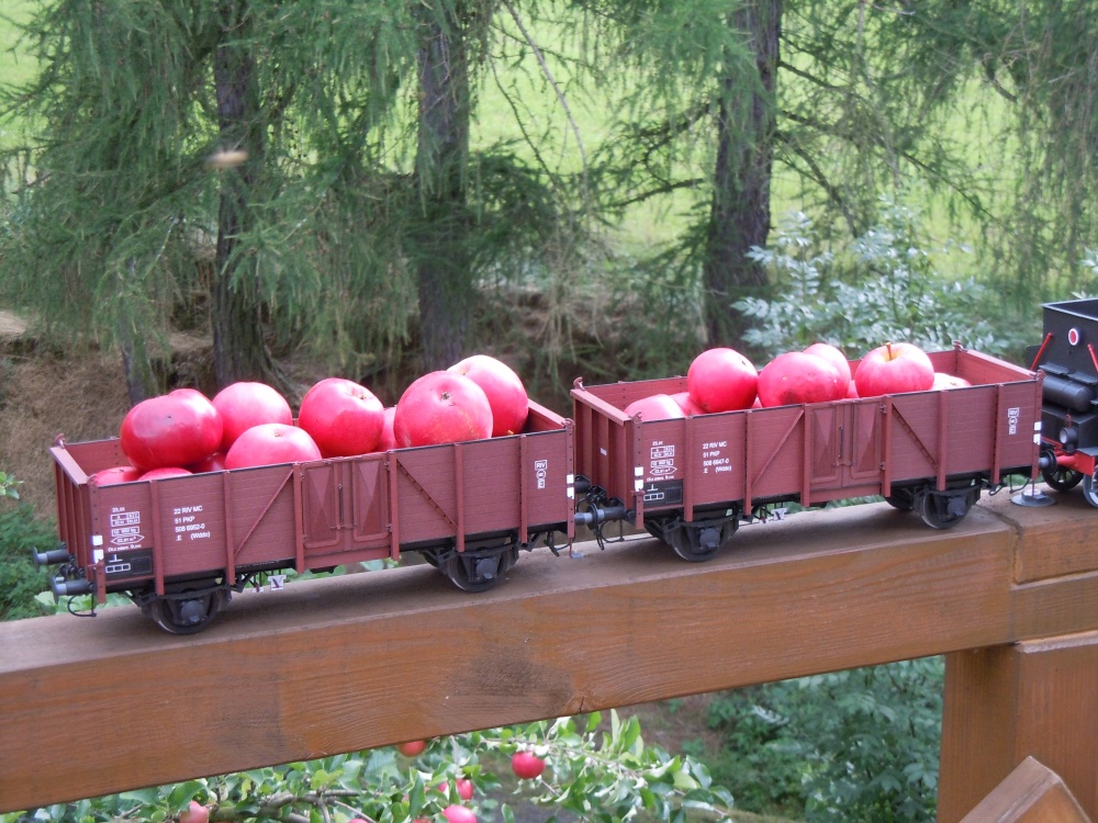 Parní lokomotiva Ty-23 + vagony typ 3W