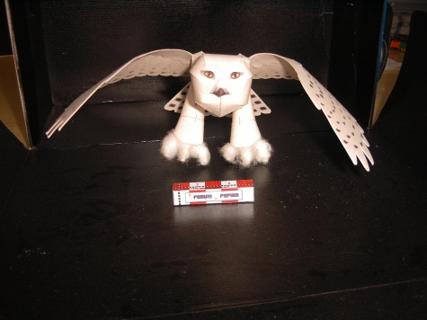 Snežná sova 2